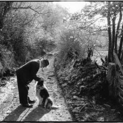 Archie Parkhouse and his dog Sally, Millhams, Dolton, Devon 1982 by James Ravilious