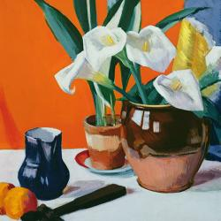 Arum Lilies by Francis Cambell Boileau