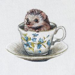 Baby Hedgehog by Emillie Ferris
