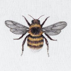 Bee by Emillie Ferris
