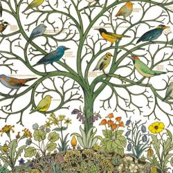 Birds of Many Climes by C F A Voysey