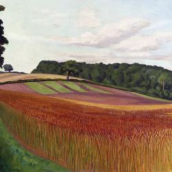 Cornfield at Wiston-by-Nayland - Suffolk by John Nash