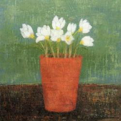 Crocus in Terracotta Pot by Anna Wilson-Patterson