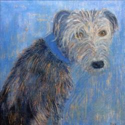 Hairy Lurcher Blues by Anna Wilson-Patterson