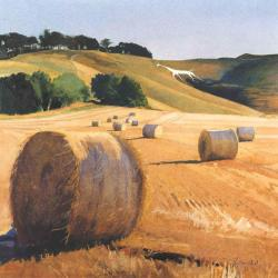 Harvest Cherhill White Horse by Bob Rudd