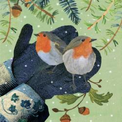 Hear the Bells and Robin Friends by Rachel Grant Pic1