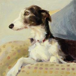 Lurcher on Spots by Claire Eastgate