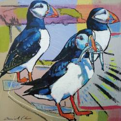 Puffins by Daniel Cole