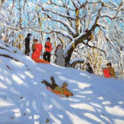 Sledging in the woods by Andrew Macara