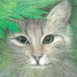 Starey Cat by Dianne Stephens
