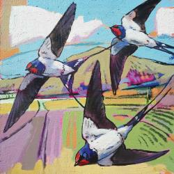 Swallows by Daniel Cole