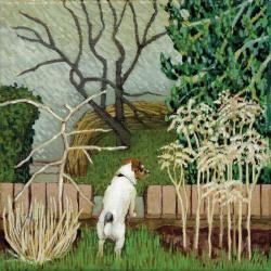 The Lookout by Ann McCay