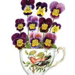 Skippy Pansies by Denise Hoyle
