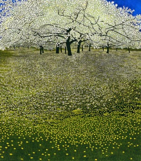 Blossom by Phil Greenwood RE