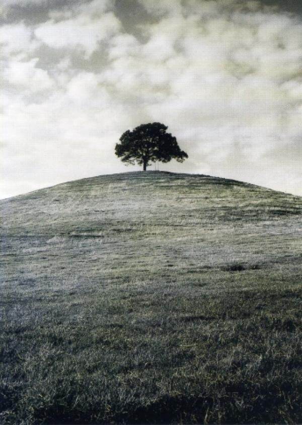 Burrow Hill Somerset by William Willoughby