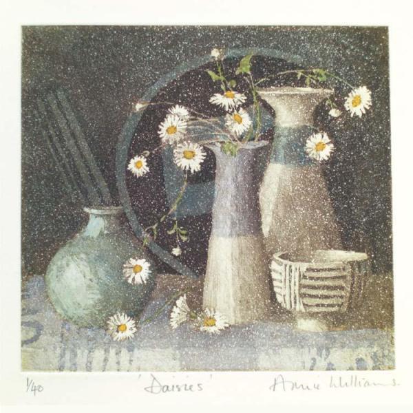 Daisies by Annie Williams