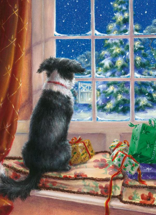 On the Windowsill by Lesley Hammett
