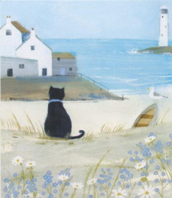 Sea Cat by Hannah Cole