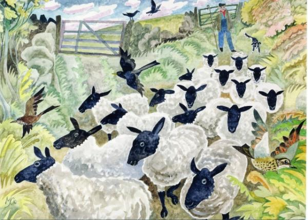 Sheep in the Lane by Michael Coulter