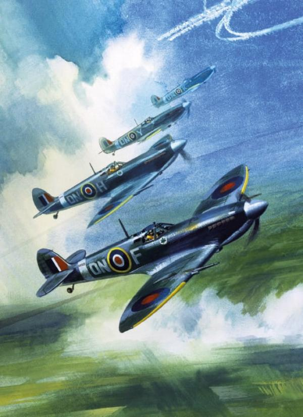 The Supermarine Spitfire MK9 by Wilf Hardy