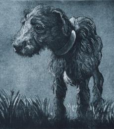 Bedlington Pup by Elizabeth Moriarty
